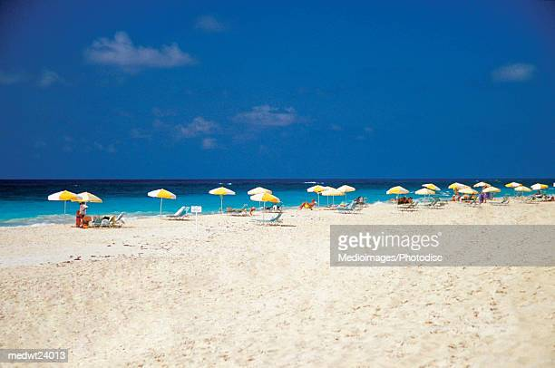 Many yellow and white umbrellas and lounge chairs in a line on Elbow Beach on Bermuda, Caribbean