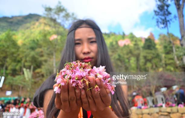 A Mao girl with Cherry flower stand to welcome Manipur Chief Minister N Biren Singh arrives with a Cherry flower at the Manipur 1St Cherry Blossom...