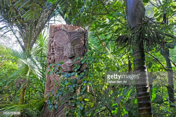 maori totem in parkland in auckland city new zealand - rafael ben ari stock pictures, royalty-free photos & images