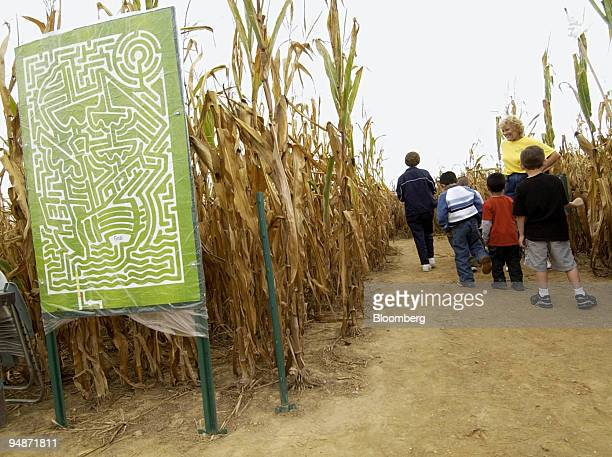 A map of the Corn Maze at Scarecrow Hollow is seen at left as a group of children and adults make their way through the maze in Salem New Jersey...
