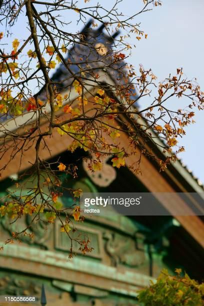 日本の伝統的建築のカエデの葉 - 岐阜県 ストックフォトと画像