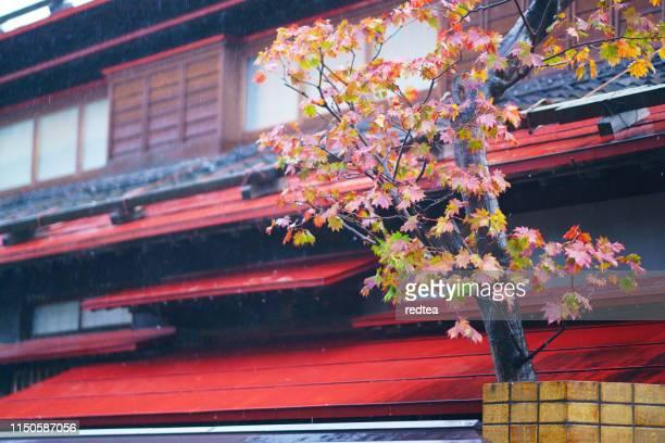 日本の伝統的建築のカエデの葉 - ナント ストックフォトと画像