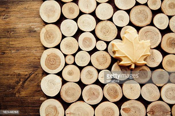 maple sugar - maple tree stock pictures, royalty-free photos & images