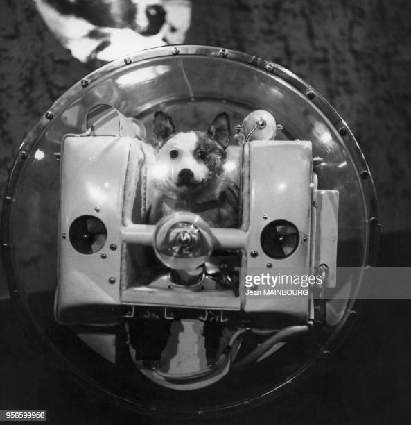 Maquette de la cabine de la chienne cosmonaute Laïka à bord du Spoutnik.