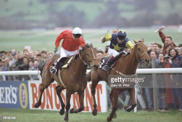 Adrian Maguire of Ireland on Cool Ground edges ahead of The Fellow to win the Cheltenham Gold Cup at Cheltenham racecourse Cheltenham England...
