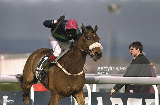 Mick Fitzgerald on Rough Quest races during the Grand National at Aintree racecourse Liverpool England Rough Quest went on to win the race Mandatory...