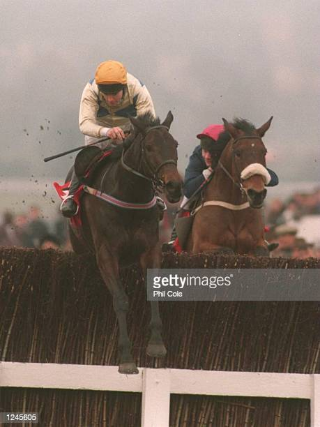 Winner C.O''Dwyer on Imperial Call leads over the last fence during The Tote Cheltenham Gold Cup Steeple Chase, Third Race , at Cheltenham Race...