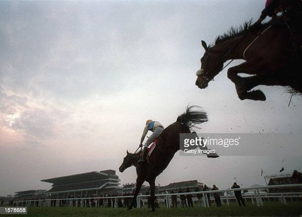Winner CO''Dwyer on Imperial Call leads Rough Quest second over the last fence during The Tote Cheltenham Gold Cup Steeple Chase Third Race at...