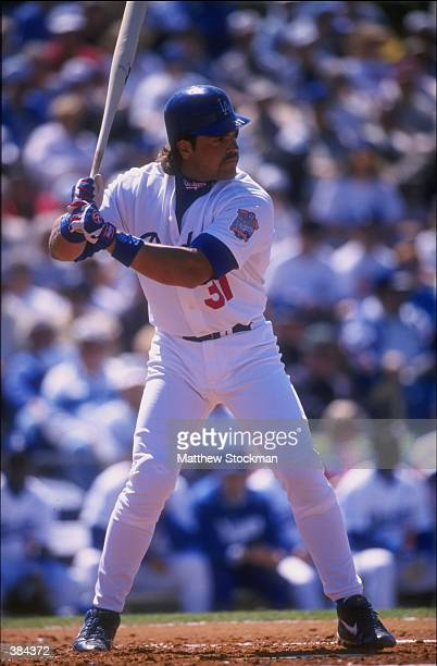 Catcher Mike Piazza of the Los Angeles Dodgers in action during a game against the Florida Marlins at Holman Stadium in Vero Beach Florida The...