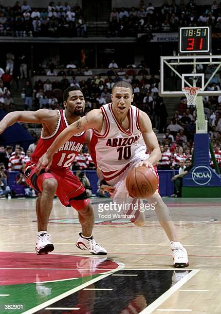 Guard Mike Bibby of the Arizona Wildcats in action against guard Terrell Stokes of the Maryland Terrapins during an NCAA Tournament game at Arrowhead...