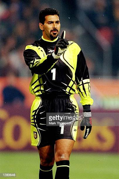 Carlos Roa in goal for Argentina against Holland in the International Friendly at the Amsterdam ArenA in Holland. The game ended 1-1. \ Mandatory...