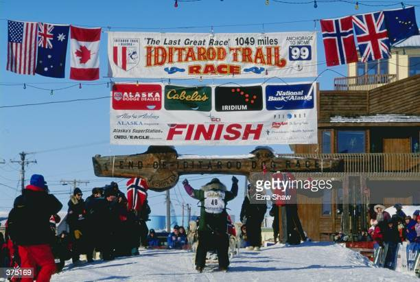 Harold Tunheim mushes his dogs through the finish line during the Iditarod Trail Race in Nome Alaska Mandatory Credit Ezra O Shaw /Allsport