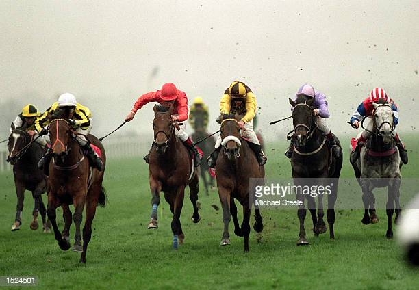 Hasty Words ridden by Michael Hills wins the Doncaster Mile at Doncaster England Mandatory Credit Michael Steele /Allsport