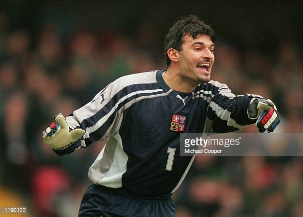 Pavel Srnicek of Czech Republic in action during the World Cup 2002 Group Three Qualifying match against Northern Ireland played at Windsor Park, in...