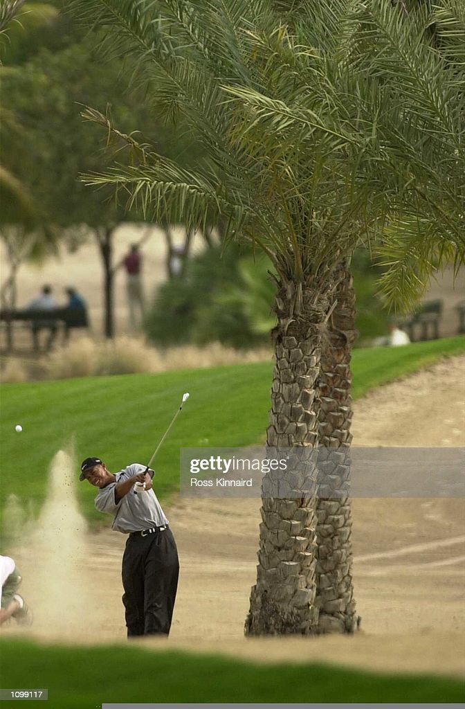 Tiger Woods of the United States play from the sand on the 12th hole during day two of the Dubai Desert Classic in Dubai . Digital Image. Mandatory Credit: Ross Kinnaird/ALLSPORT