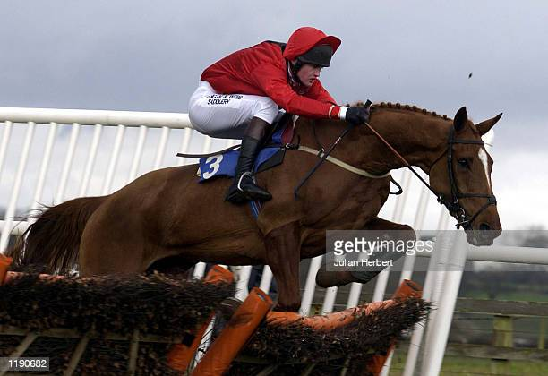 Joe Tizzard and No Need For Alarm clear the last flight at Bangor On Dee before going on to land The JPCS Mares Only Novice Hurdle Race DIGITAL IMAGE...