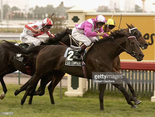 Paul Harvey riding Old Comrade croses the line to win during the Australian Cup Horse Racing Carnival held at the Flemington Race Course Melbourne...