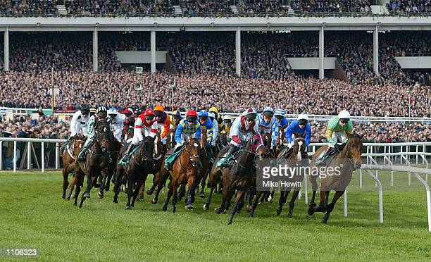 The field in this year's first race, the Gerrard Supreme Novices Hurdle, passes the packed grandstand at Cheltenham. DIGITAL IMAGE Mandatory Credit:...