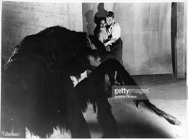 Mara Corday is held by John Agar in a scene from the film 'Tarantula' 1954