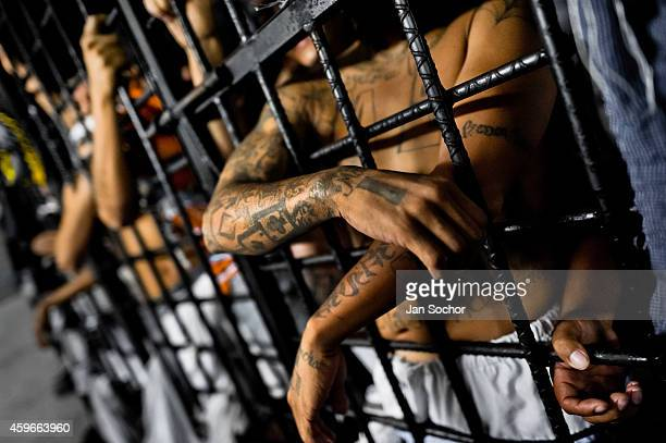 Mara Salvatrucha gang members are seen behind the bars of cells at a detention center on February 20, 2013 in San Salvador, El Salvador. Although the...