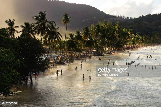 trinidad and tobago ストックフォトと画像 getty images
