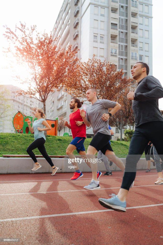 Marathon Team Training : Stock-Foto