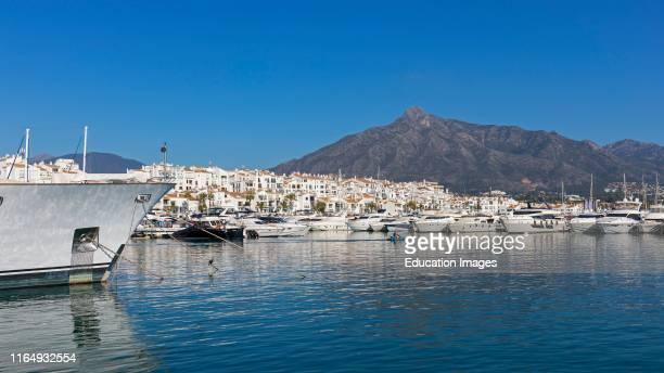 Marbella Costa del Sol Malaga Province Andalusia southern Spain Luxury boats in Jose Banus yacht harbor Puerto Jose Banus La Concha mountain in...