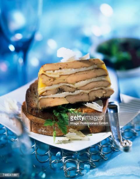 marbled foie gras and parmesan terrine - foie gras photos et images de collection