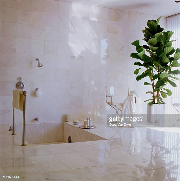 marble-tiled bathroom with sunken shower - toilet planter stock pictures, royalty-free photos & images