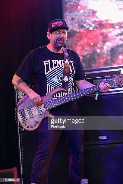 Marc Brownstein of Conspirator performs onstage at The Other Tent during day 2 of the 2013 Bonnaroo Music Arts Festival on June 14 2013 in Manchester...