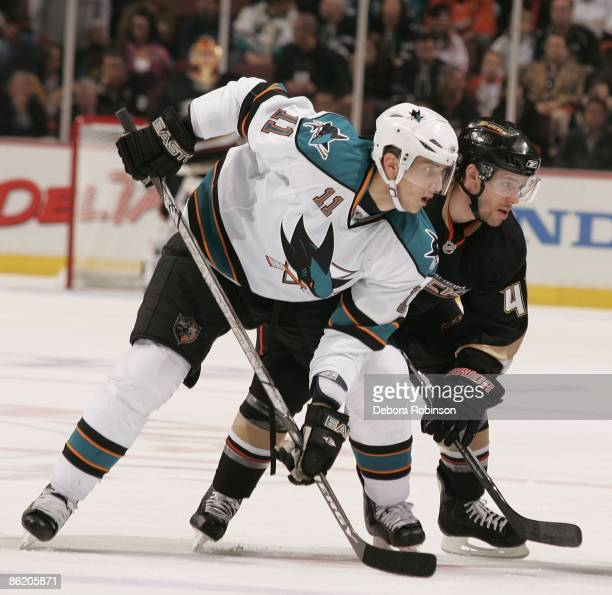 Marcel Goc of the San Jose Sharks faces off against Andrew Ebbett of the Anaheim Ducks during Game Four of the Western Conference Quarterfinal Round...