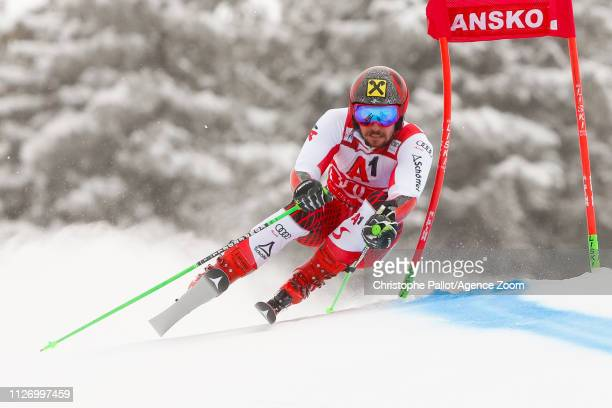 Marcel Hirscher of Austria competes during the Audi FIS Alpine Ski World Cup Men's Giant Slalom on February 24 2019 in Bansko Bulgaria