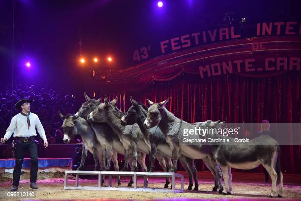 Marcel Kramer and his donkeys perform during the 43rd International Circus Festival of MonteCarlo on January 18 2019 in Monaco Monaco