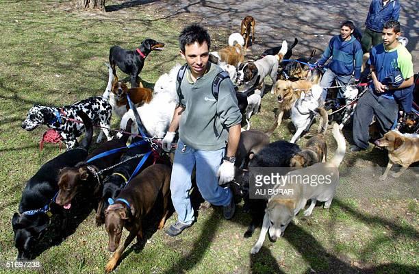 Marcelo Ciorazzo junto a otros paseadores de perros llega a la Plaza Libres del Sur el 28 de octubre de 2004 con ocho canes a su cuidado AFP PHOTO...