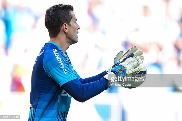 Marcelo Grohe of Gremio during match between Gremio and Internacional as part of Brasileirao Series A 2014 at Arena do Gremio on November 09 in Porto...