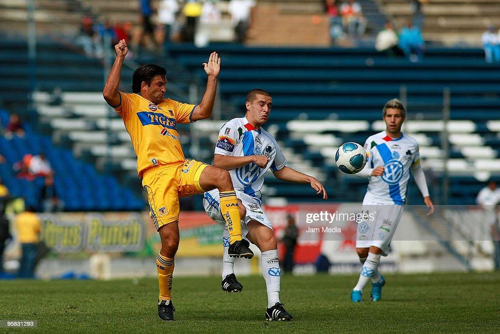Puebla v Tigres : ニュース写真