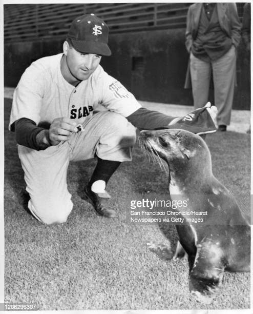 San Francisco Seals player Ray Orteig attempts to get a hat on the team's new mascot.