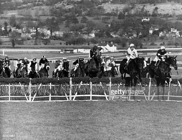 Horses negotiate the 3rd fence of the Champion Hurdles race at Cheltenham