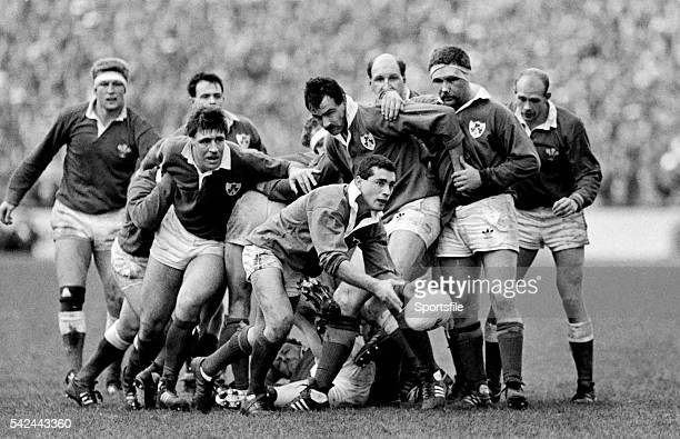 5 March 1988 Ireland scrumhalf Michael Bradley gets the ball away watched by teammates Donal Lenihan Mike Gibson and Des Fitzgerald Five Nations...
