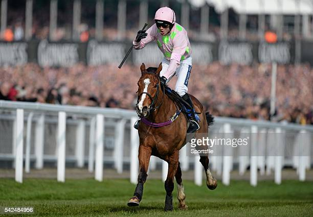12 March 2014 Jockey Ruby Walsh celebrates victory on Faugheen as they come up to the finishline to win the Neptune Investment Management Novices'...