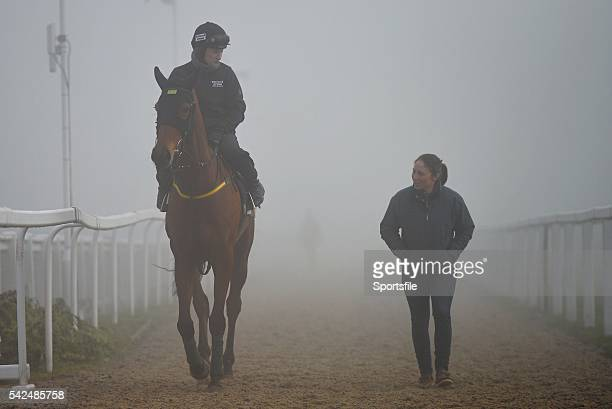 14 March 2014 Ned Buntline with Nina Carberry up before the day's races Cheltenham Racing Festival 2014 Prestbury Park Cheltenham England Picture...
