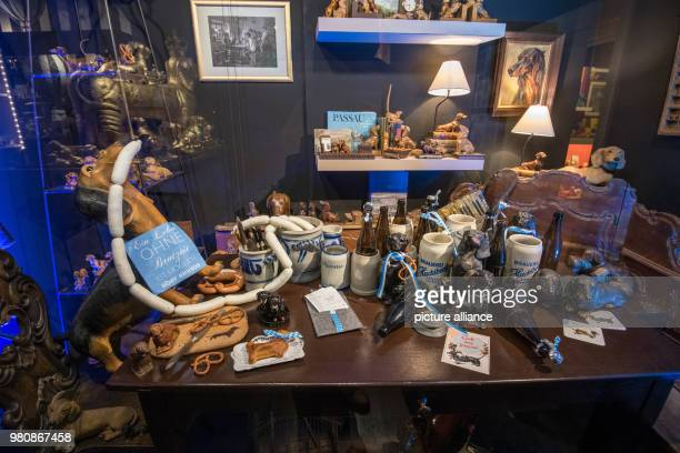 Dachshund figurines of various types and sizes are on display at the Dachshund Museum Photo Armin Weigel/dpa