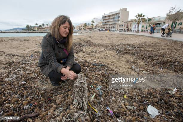 Aina Barcelò from the environment organisation 'Ondine Baleares' examining rubbish on the beach in the Palma bay which has got mixed up with Neptune...