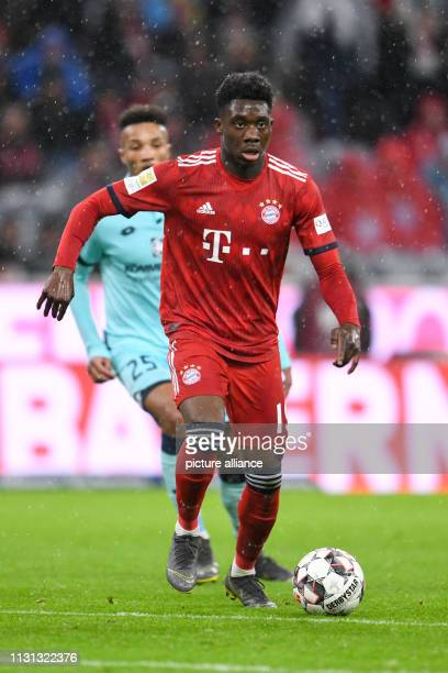 Soccer Bundesliga Bayern Munich FSV Mainz 05 26th matchday in the Allianz Arena Alphonso Davies of Bavaria plays the ball Bavaria wins the game 60...