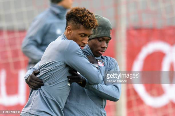 Soccer Champions League FC Bayern Liverpool Training FC Bayern before the second leg of the round of 16 on Säbener Straße Kingsley Coman and Alphonso...
