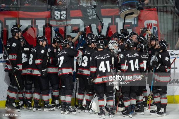 Ice hockey DEL Nürnberg Ice Tigers Adler Mannheim championship round quarter finals 4th matchday The Nuremberg players cheer over the goal to 43 The...