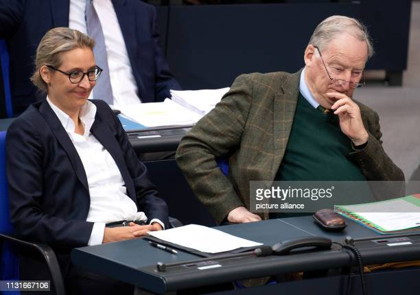 Alice Weidel and Alexander Gauland the chairmen of the AfD parliamentary group take part in the session of the Bundestag One of the topics of the...