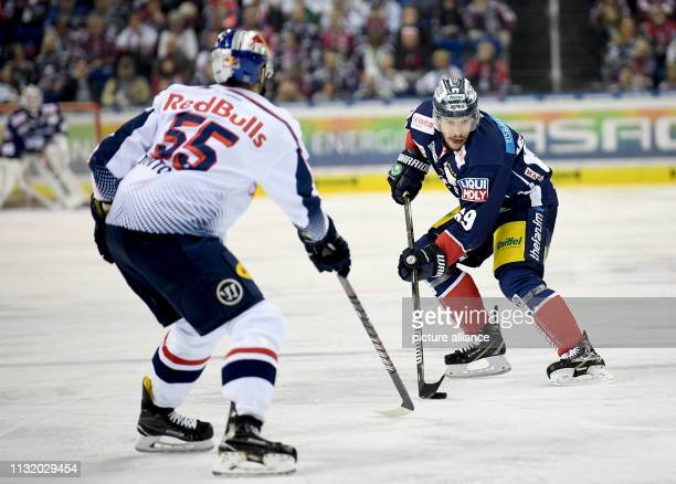 Ice hockey DEL Eisbären Berlin EHC Red Bull Munich championship round quarter finals 4th matchday Munich's Ryan Button and Berlin's Florian Kettemer...