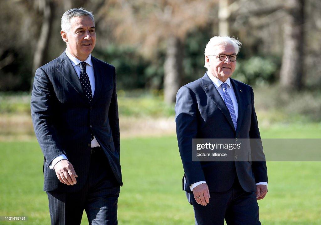 President of Montenegro with the Federal President : Nachrichtenfoto