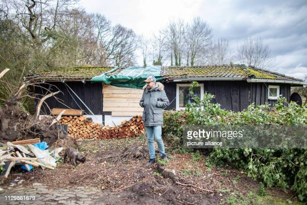11 March 2019 North RhineWestphalia Mülheim an der Ruhr Andreas Kallweit stands with dog Milla in front of his garden house next to the tree that...